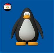 Egyptian flag new model