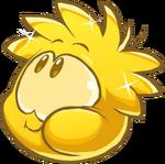 GoldPuffleMunch