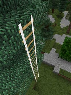 Rope ladder image