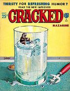 Cracked No 40
