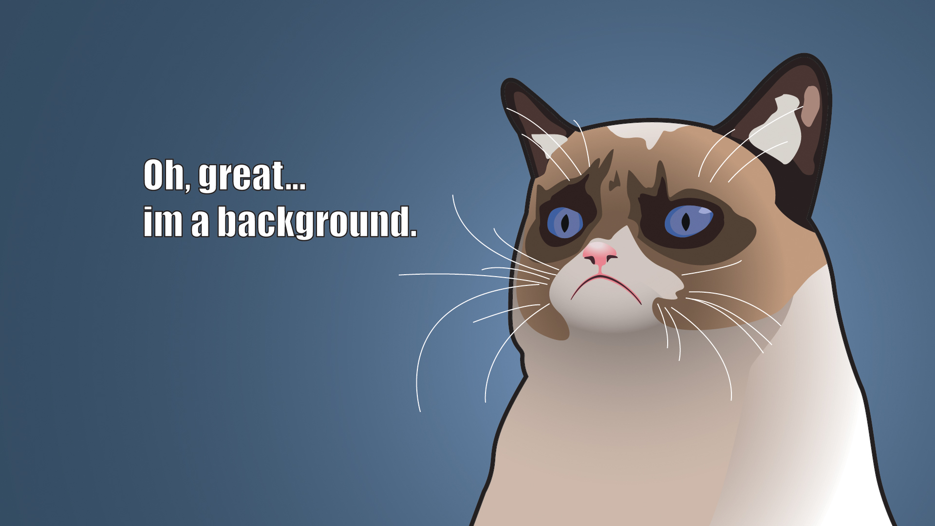 Grumpy Cat Wallpaper 7