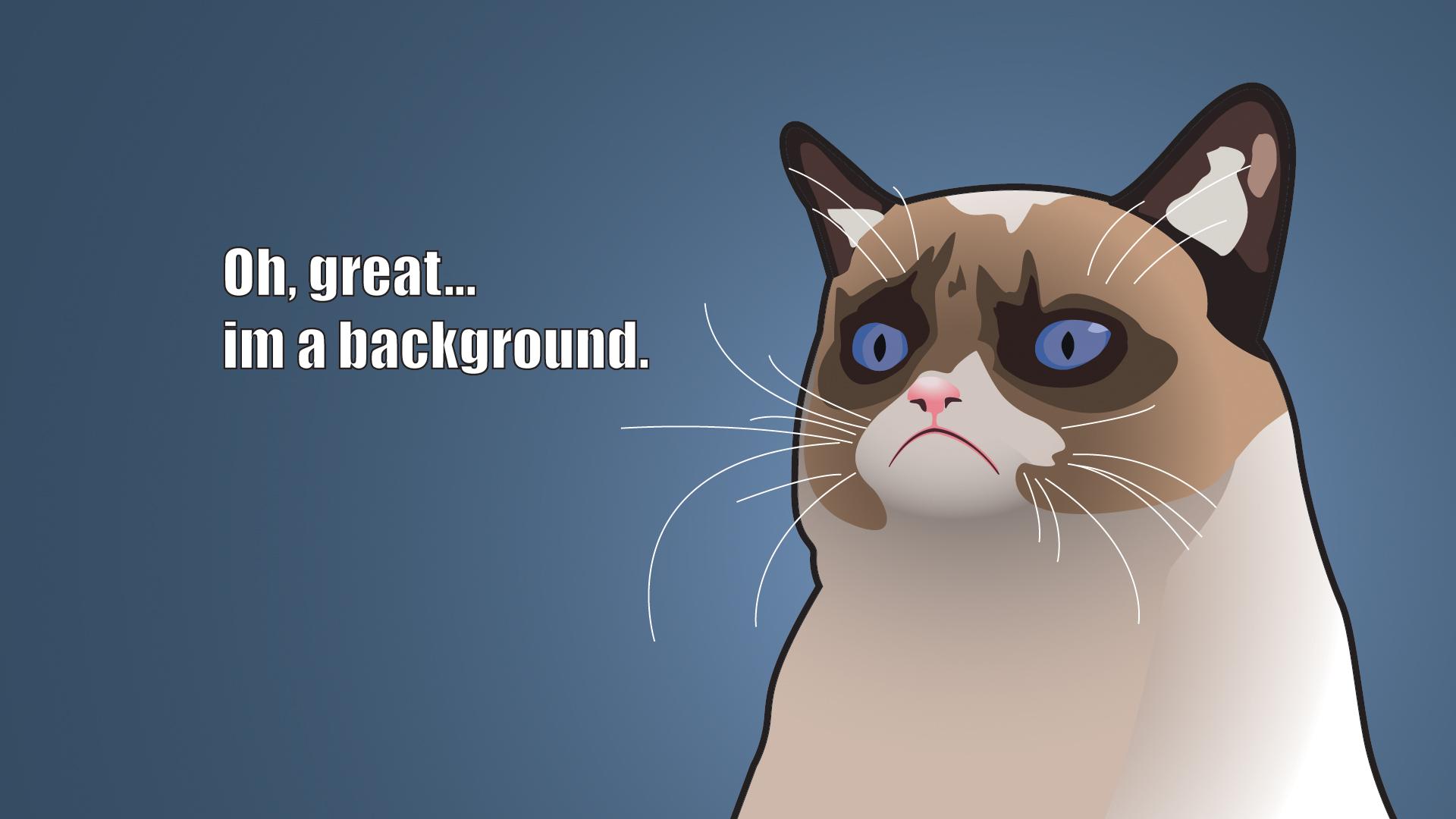 Grumpy Cat Wallpaper 7
