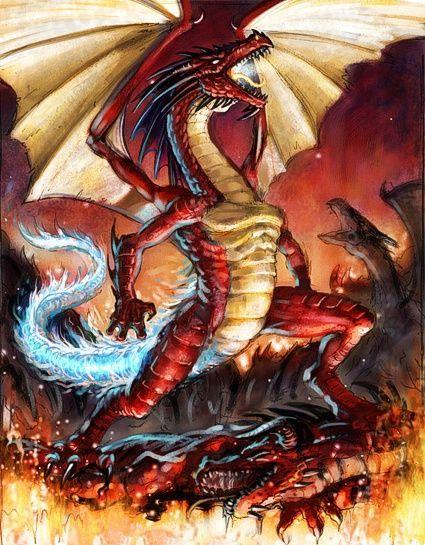 Furioso dragon-13-