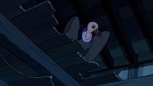 Vulture's Nest (206)