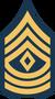 Brigadier seargant