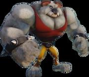 Koala Kong