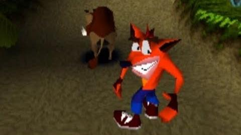 Crash Bandicoot - Hog Wild