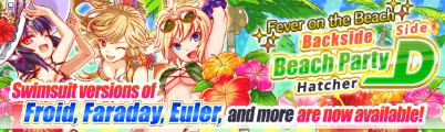 Fever on the Beach Backside Beach Party Hatcher Side D Banner
