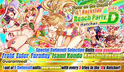 Fever on the Beach Backside Beach Party Hatcher Side D