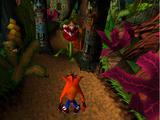 Jungle Rollers