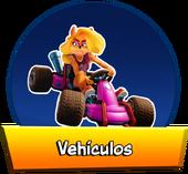BT-Vehiculos