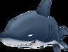 SharkTwinsanity