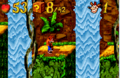 Jungle jam.png