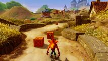 Toad Village Crash Bandicoot N. Sane Trilogy