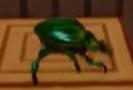Beetle NSane