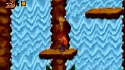 Crash Bandicoot XS - Tiny Tiger