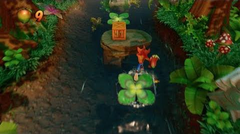 "Crash Bandicoot ""N"