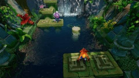 "Crash Bandicoot 2 ""N"