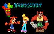 Bandicoot team
