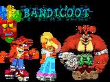 Team Bandicoot