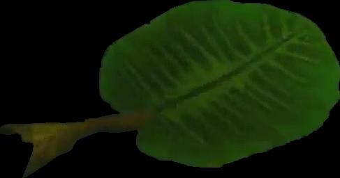 File:Crash Bandicoot Leaf.png