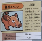 Hog Japanese artwork