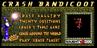 Crash Bandicoot Website