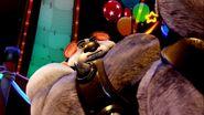 Koala Kong CTV