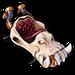 NF Skull Rider Kart