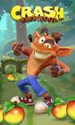 Crash bandicoot mobile 4
