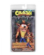 NCEA Crash Figure