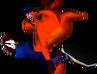 Bandicoot Crash 1 Crash Bandicoot