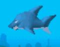 SharkTHA.png