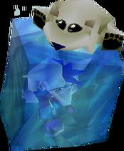 Polar e Crash quando caem na água gelada.