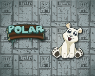 Wallpaper-Polar-crash-bandicoot-37401805-1280-1024