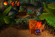 Crash Bandicoot1