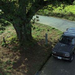Great Kawakami Tree