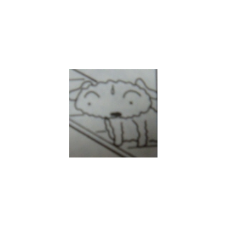 Shiro in the manga.