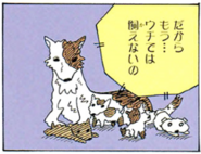 Borscht and her puppies