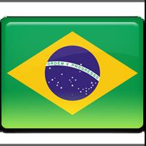 Brazil-Flag-256