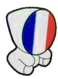 Olympic Committee (France)