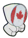 Olympic Committee (Canada)
