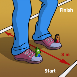 Games-race