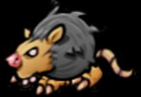 Vermin rat2