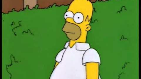 Homer disappears into bushes
