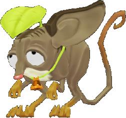 Shrewdshrew