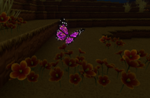 Creativerse Caideenah arc sign butterfly200