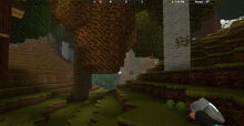 Creativerse Forest with lettuce1991