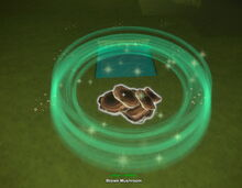 Creativerse brown mushroom fertilized growing from spores 2019-02-01 01-47-01-25