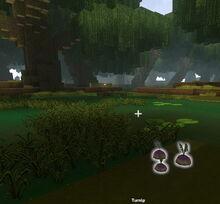 Creativerse Turnip in Swamp53775